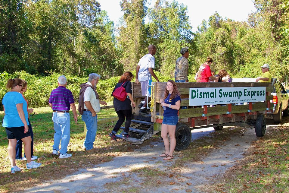 Wagon Rides at the Dismal Swamp